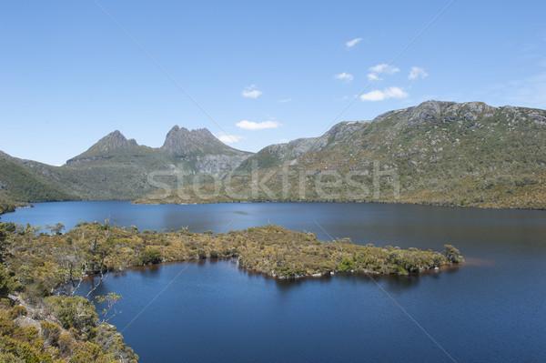 Kołyska górskich tasmania wody lasu charakter Zdjęcia stock © roboriginal