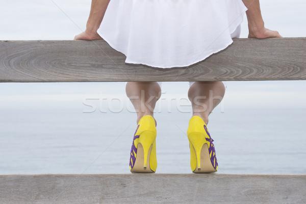 Vrouwelijke benen schoenen oceaan aantrekkelijke vrouw Stockfoto © roboriginal