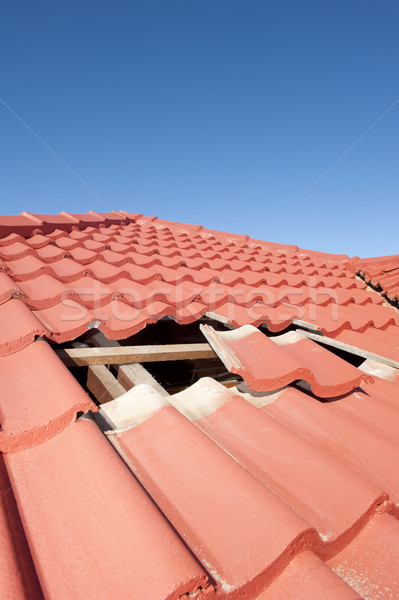 Foto d'archivio: Rosso · piastrelle · tetto · costruzione · casa