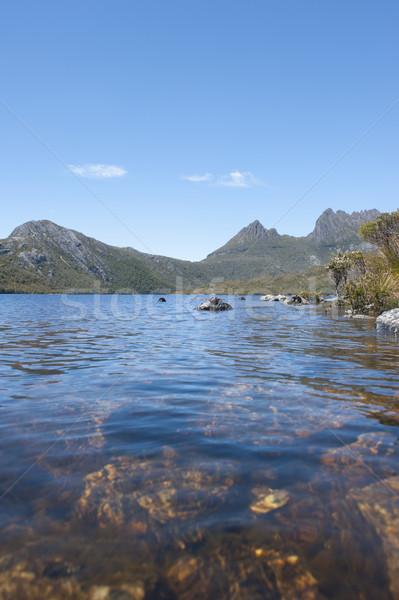 Jezioro dove kołyska górskich tasmania sceniczny Zdjęcia stock © roboriginal