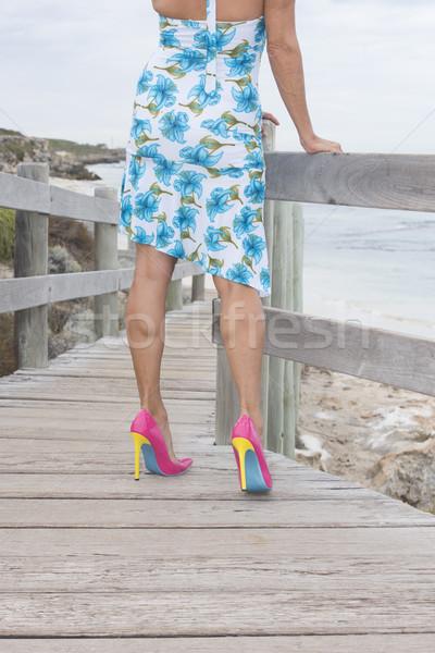 Elbise yüksek topuklu açık kadın çekici Stok fotoğraf © roboriginal