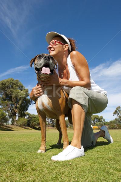 Kadın boksör boğa köpek sahip arkadaş Stok fotoğraf © roboriginal