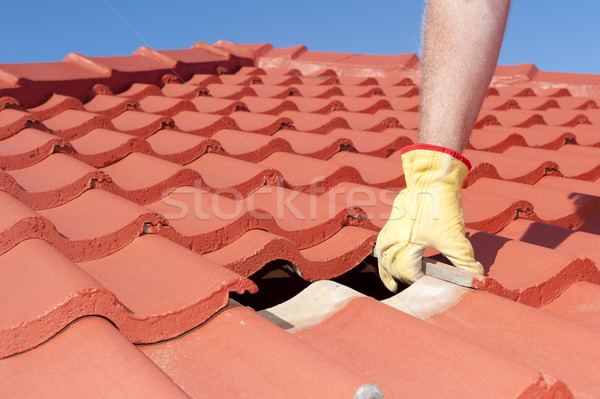 Construction worker shingle roofing repair  Stock photo © roboriginal