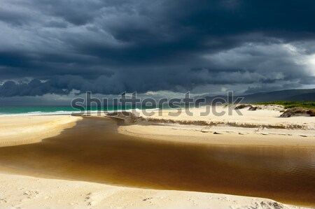Wild weather storm cloud formation ocean beach Stock photo © roboriginal