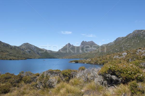 Kołyska górskich parku Australia sceniczny krajobraz Zdjęcia stock © roboriginal