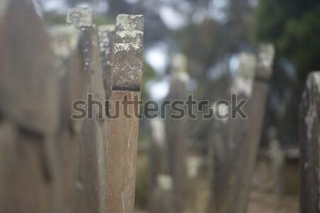 Liman tazmanya mezarlık dünya miras Stok fotoğraf © roboriginal