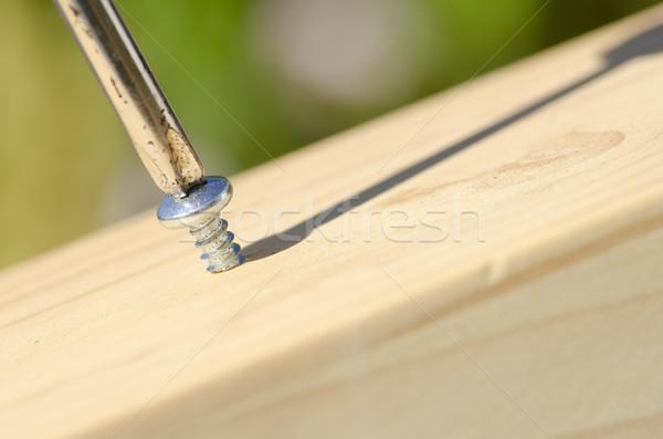 Vis tournevis bois surface détaillée Photo stock © roboriginal