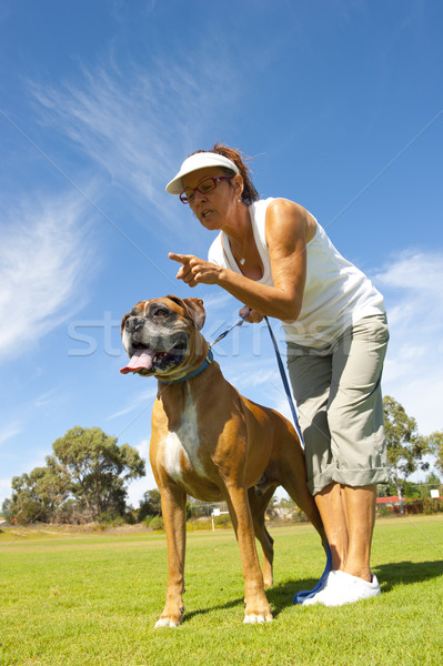 Woman with boxer bull dog Stock photo © roboriginal