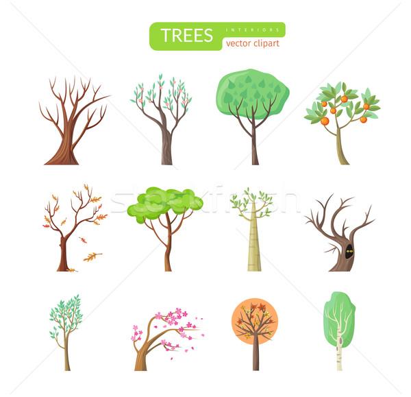 Establecer aislado árboles diseno árbol forestales Foto stock © robuart