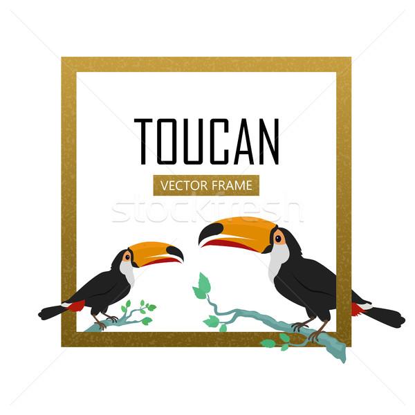 Vogel ontwerp vector frame dieren amazone Stockfoto © robuart