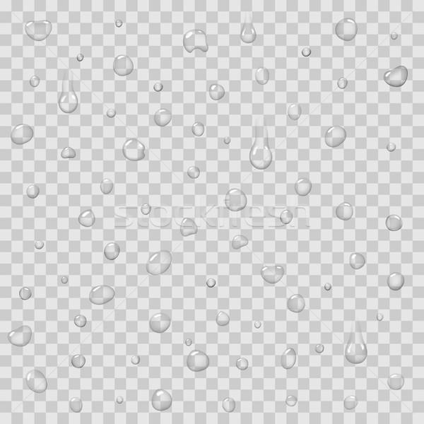 Regen druppels geïsoleerd vector vloeibare Stockfoto © robuart