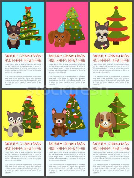 陽気な クリスマス 明けましておめでとうございます ペット スプルース セット ストックフォト © robuart
