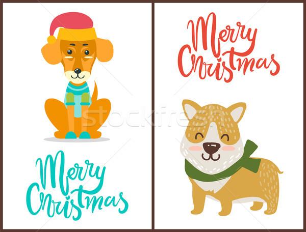 Allegro Natale banner congratulazione animali luminoso Foto d'archivio © robuart