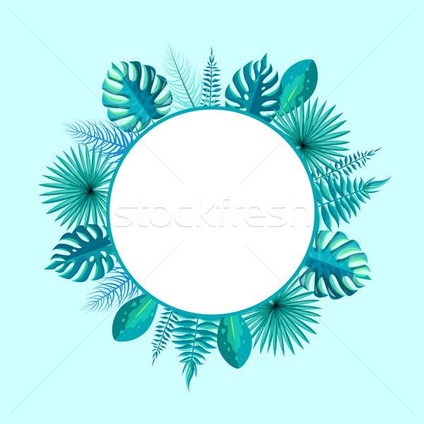 Empty Round Frame Spare Place for Text Palm Leaf Stock photo © robuart