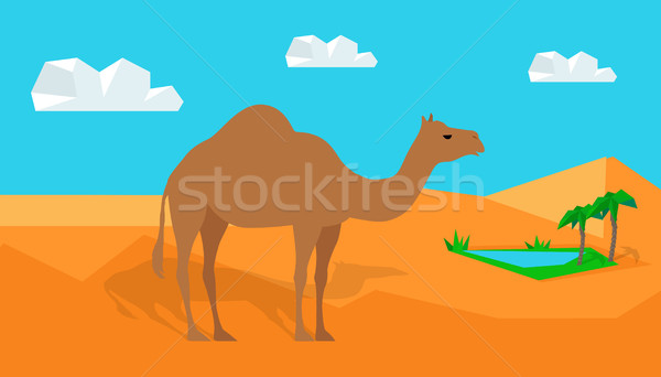 Dromedary Camel in Desert Vector in Flat Design Stock photo © robuart