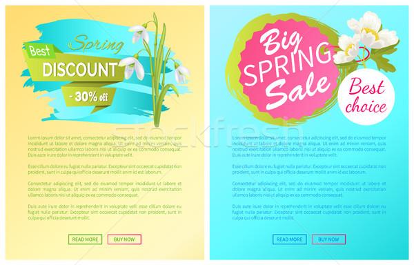 Tavasz nagy vásár árengedmény új ajánlat Stock fotó © robuart