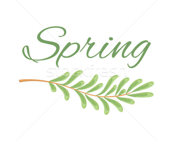 Spring and Branch with Tiny Oblong Leaves Poster Stock photo © robuart