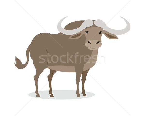 African Buffalo Cartoon Icon in Flat Design Stock photo © robuart