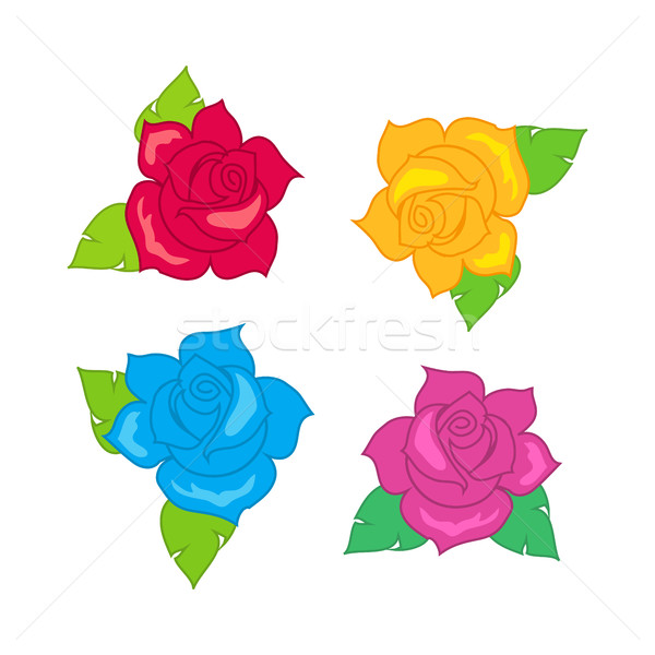Red Blue Pink Purple Rose with Green Leaves. Stock photo © robuart