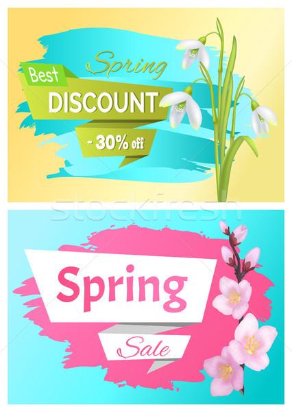 Wiosną sprzedaży reklama etykiety oddziału sakura Zdjęcia stock © robuart