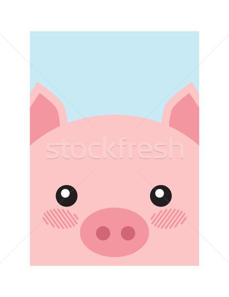 Pig Head Book Cover Design Vector Illustration Stock photo © robuart