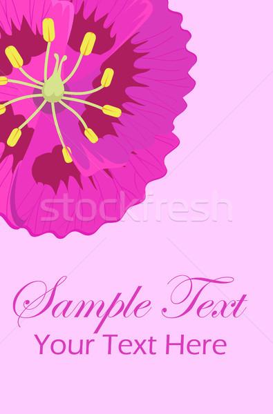 приветствие листовка Purple цветок углу Top Сток-фото © robuart