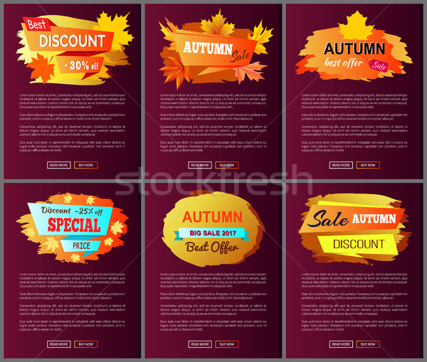Autumn Big Sale 2017 Best Offer Special Discount Stock photo © robuart