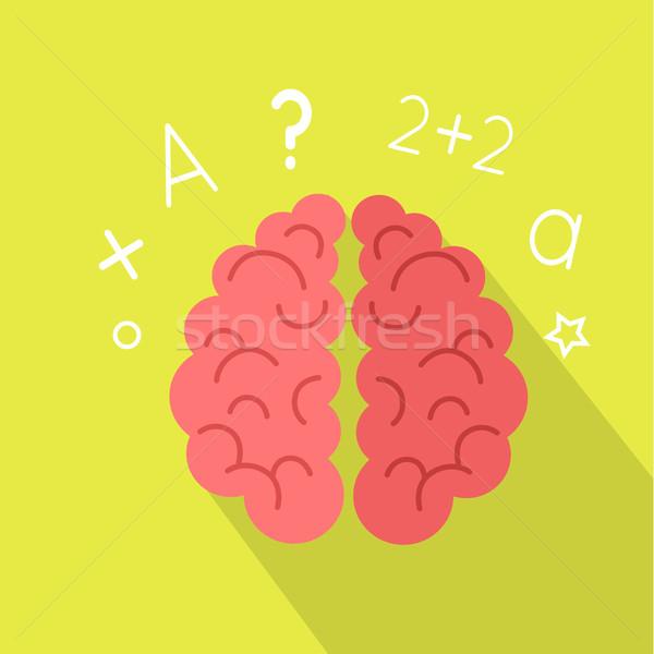 Creative Concept of the Human Brain Stock photo © robuart