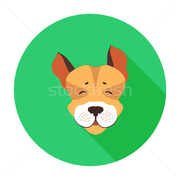 Happy Muzzle of Jack Russell Terrier Flat Icon Stock photo © robuart