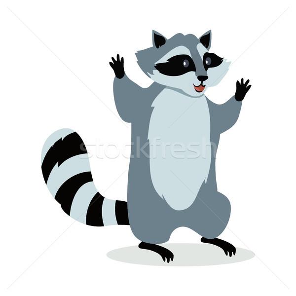 American Raccoon Cartoon Icon in Flat Design Stock photo © robuart