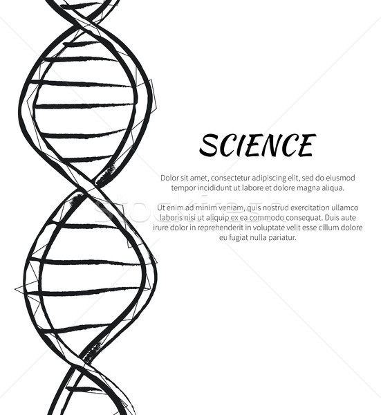 Science DNA Code Structure Icon Vector Poster Stock photo © robuart
