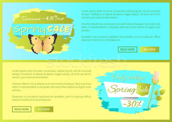 Voorjaar verkoop poster korting kleurrijk vlinder Stockfoto © robuart