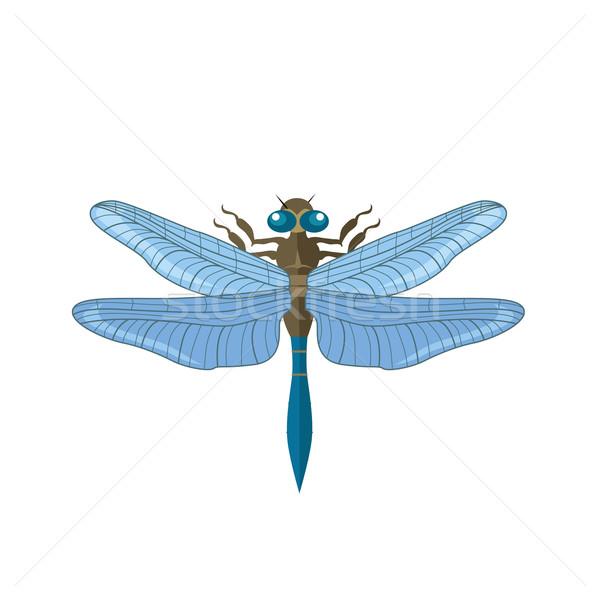 Silhueta libélula vetor isolado branco beleza Foto stock © robuart