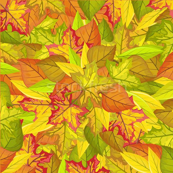Végtelen minta őszi levelek őszi ősz természet juhar Stock fotó © robuart