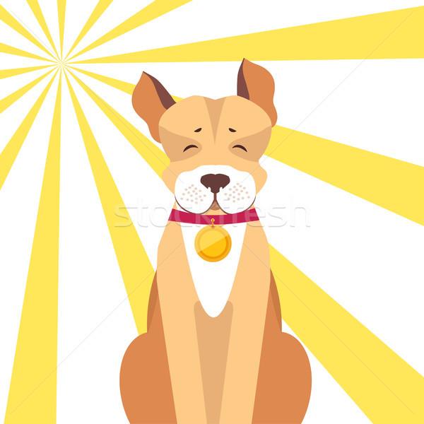 Kutya csukott szemmel napos piros arany medál Stock fotó © robuart