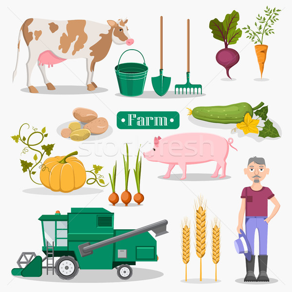 Farm Worker, Animals and Plants Illustrations Set Stock photo © robuart