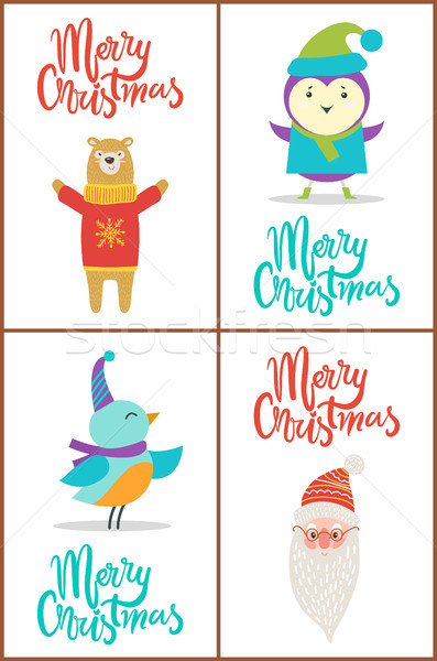 Alegre Navidad tener aves anunciante rojo Foto stock © robuart