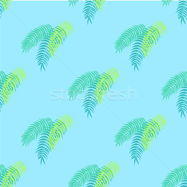 Pálmalevelek gyűjtemény minta végtelen minta tapéta növények Stock fotó © robuart