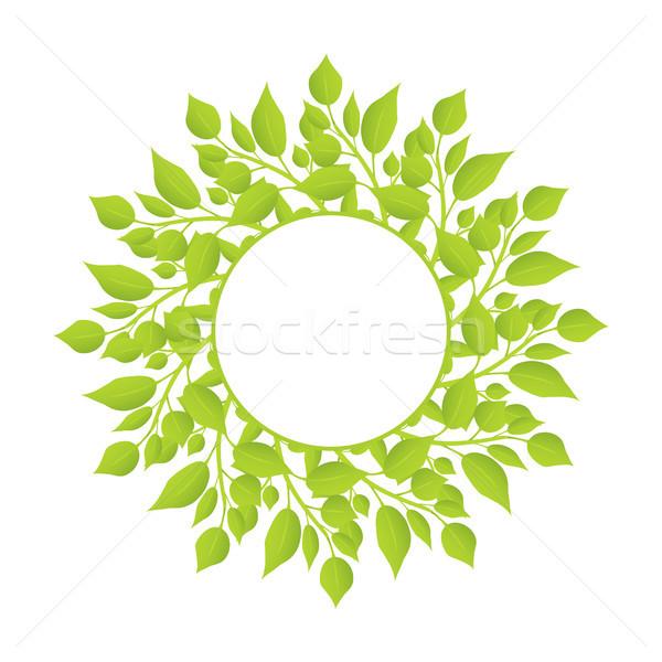 Krans planten dun stengel bladeren Stockfoto © robuart