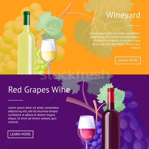 Wineyard and Red Grapes Wine Internet Banners Stock photo © robuart