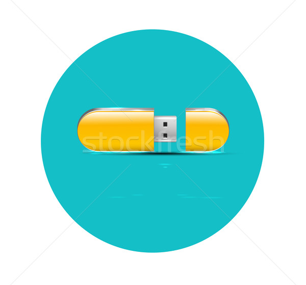 Flat flash USB icon Stock photo © robuart