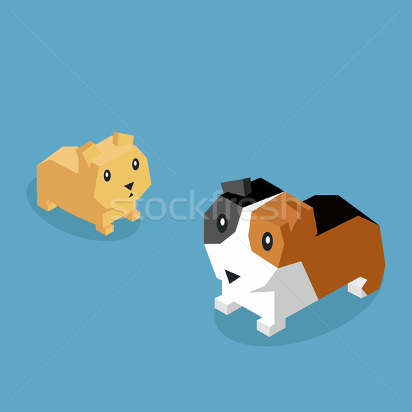 Pets Guinea Pig Icon Isometric 3d Design Stock photo © robuart