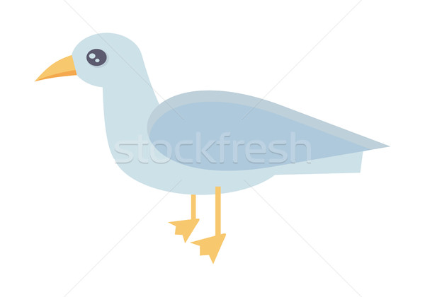 Gull Bird Vector Illustration in Flat Design.   Stock photo © robuart