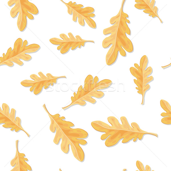 Seamless Pattern with Autumn Oak Leaves Isolated Stock photo © robuart