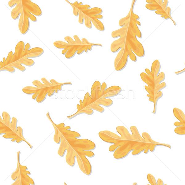Végtelen minta ősz tölgy levelek izolált levél Stock fotó © robuart