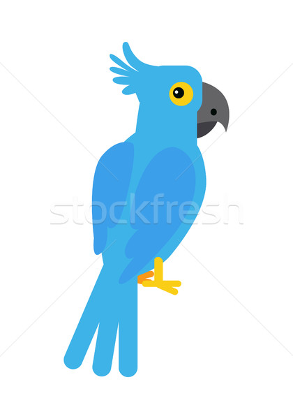 Blue Cockatoo Parrot Stock photo © robuart