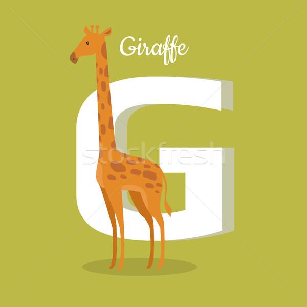 Animals Alphabet. Letter - G Stock photo © robuart