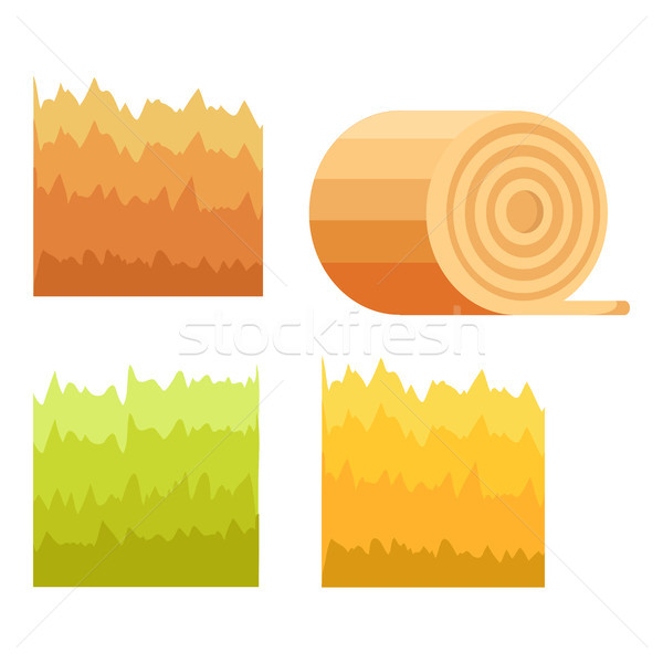 Green Grass, Yellow Stack of Hay, Stump of Tree Stock photo © robuart