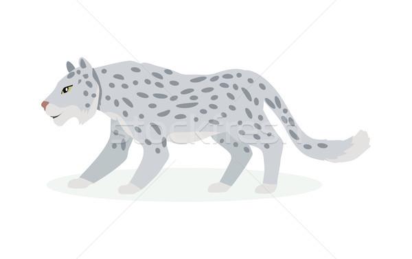 Neve Leopard cartoon cute vettore Foto d'archivio © robuart