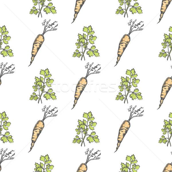 Saine carotte persil croustillant légumes Photo stock © robuart